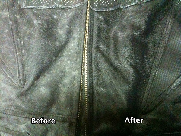 How to Clean Mold off Leather - Upholstery Cleaning Hub